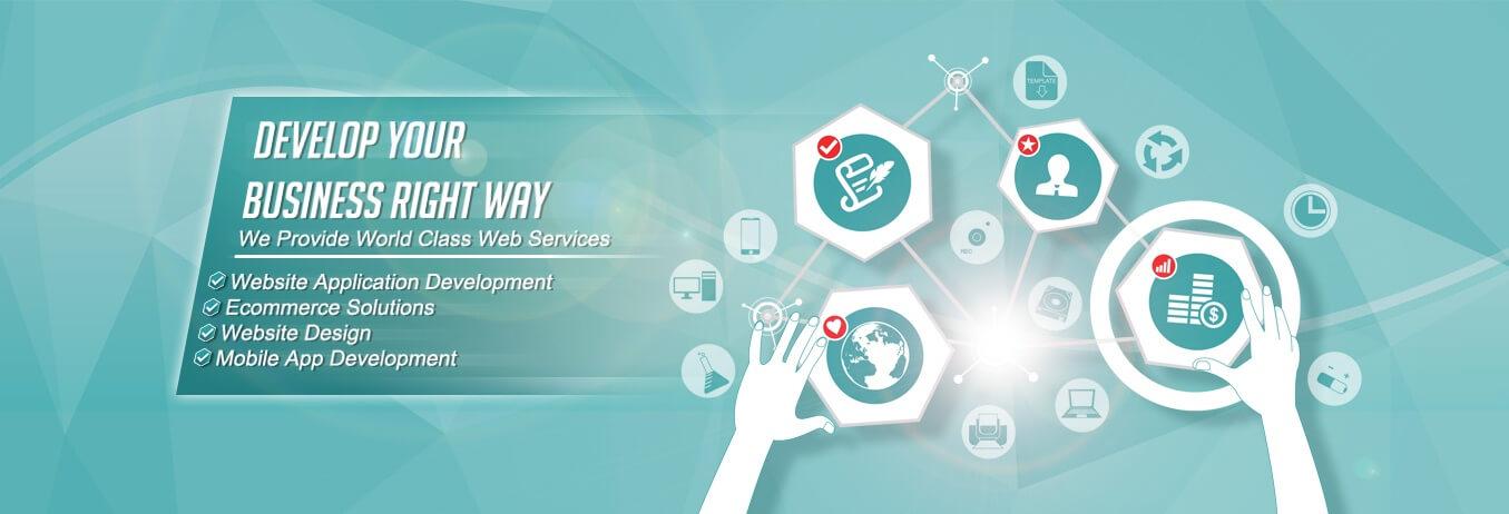 Website Designing Company In Usa Web Design And Development In Usa Software Development India Datalogysoftware Com
